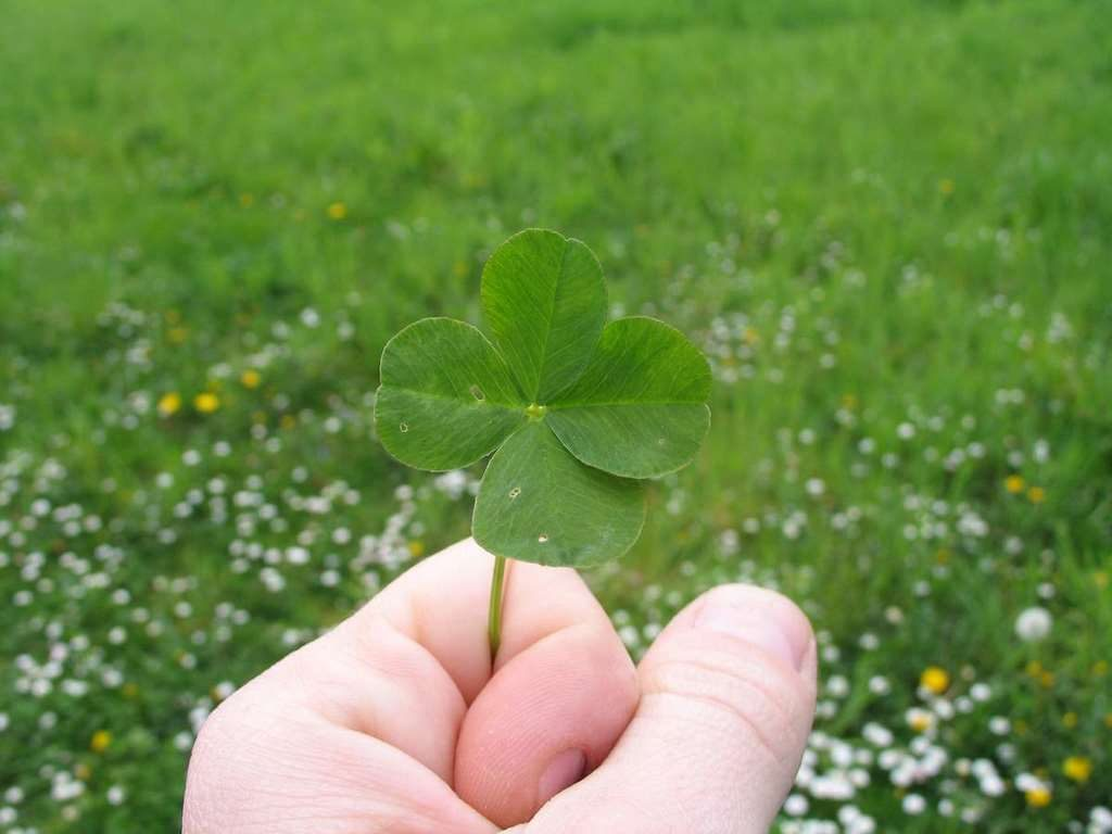 Hechizo para atraer la suerte
