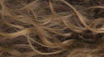 Hechizo del cabello