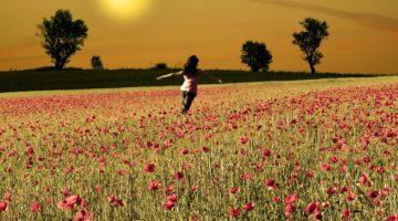 Hechizos para lograr la felicidad